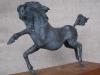 bronze-horse-d